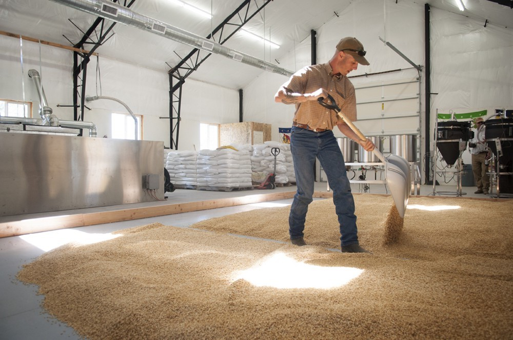 Flipping our floor malt by hand at the Farmstead Malt House in Tygh Valley, Oregon.