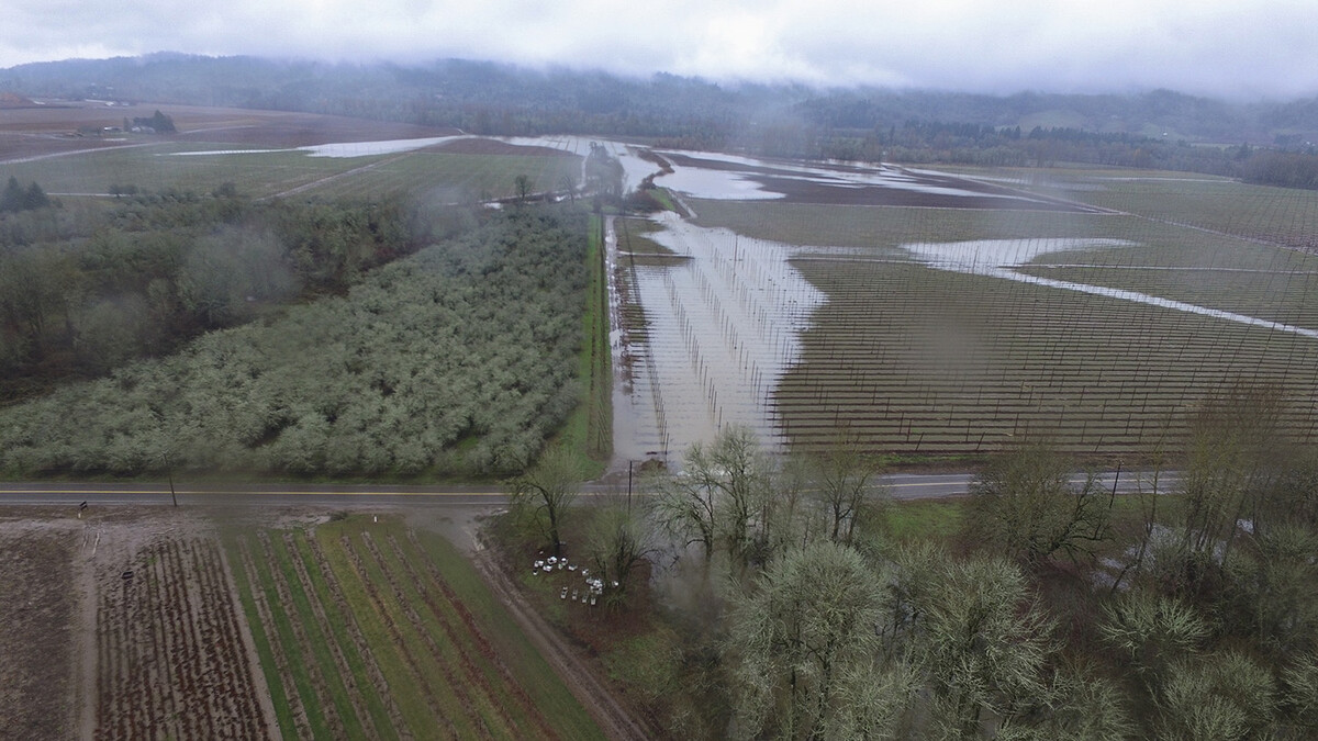 The Willamette River floods the hop fields, bringing with it rich and fertile soil.