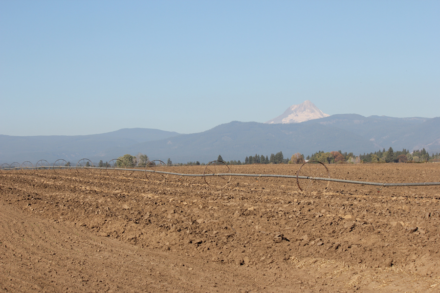 A freshly plowed field with irrigation wheels